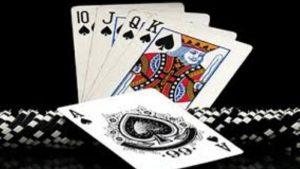 Jenis Pemain di Permainan Poker Online